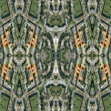 Complexity: Endless Subdivision in Landscapes Of Labour Love and Learning. By Stanza 2006